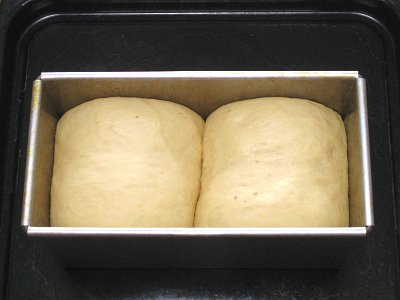 味噌パン二次発酵
