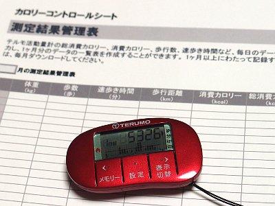 「テルモ活動量計 MT-KT01」を使ってダイエットを実践