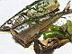 秋刀魚の酢醤油煮